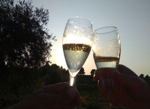 兩個人手舉著香檳杯在乾杯